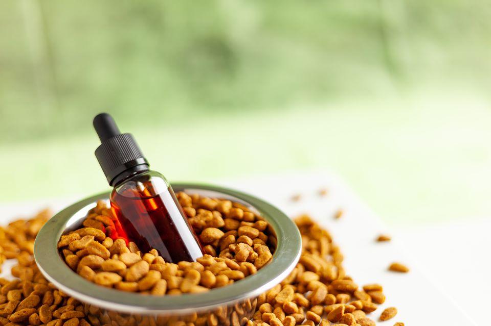 huile de cbd, Comment l'huile de CBD peut-elle aider votre chat ?